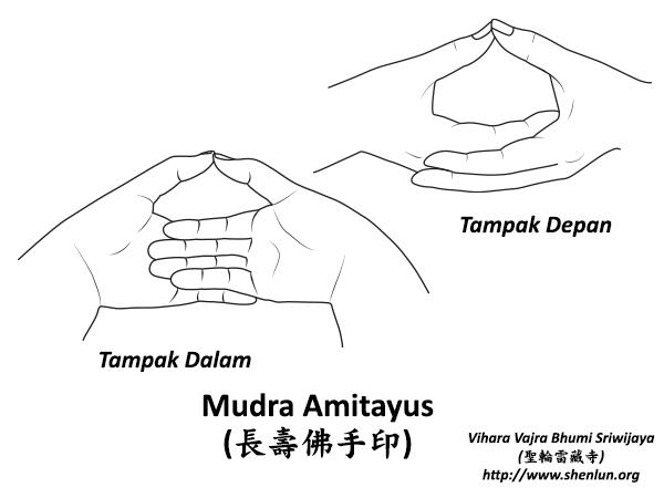 Mudra Buddha Amitayus