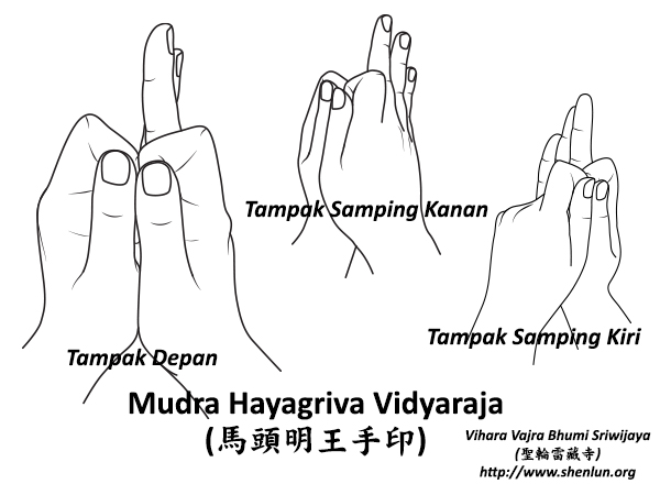 mudra hayagriva Mudra   手印