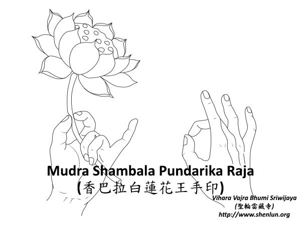Mudra Shambala Pundarika Raja