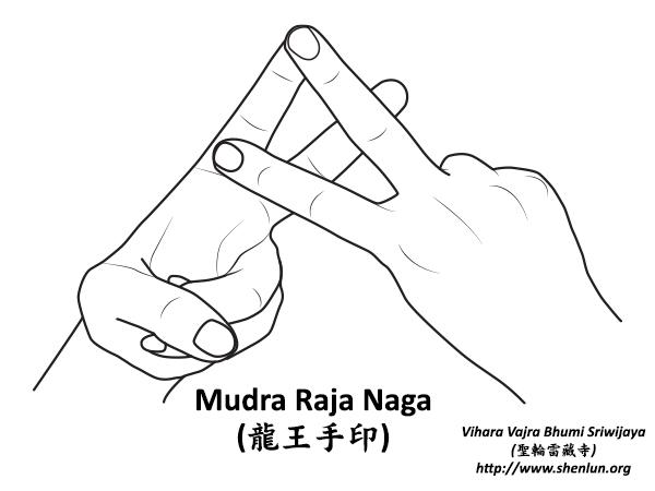mudra rajanaga Mudra   手印