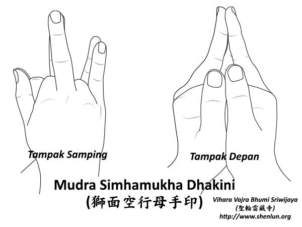 mudra simhamukha Mudra   手印