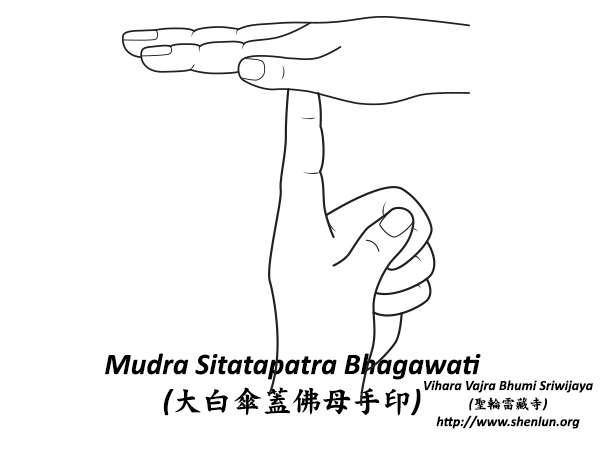 mudra sitatapatra Mudra   手印